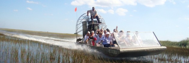 Les Everglades, entrez au royaume des alligators