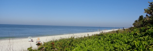 Road Trip découverte de la côte Ouest de la Floride