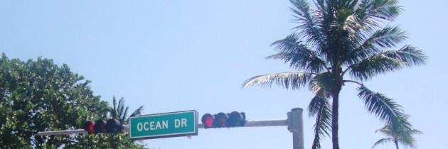 Le permis de conduire à Miami