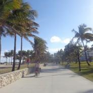 Miami, l'envers du décor